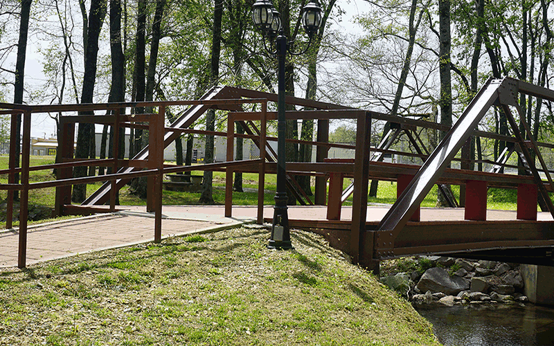 walking trail bridge 800x500